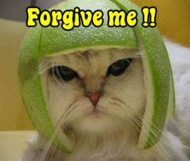 awww.zanyimages.com_Sorry_Forgive_20me_20_21_21.jpg